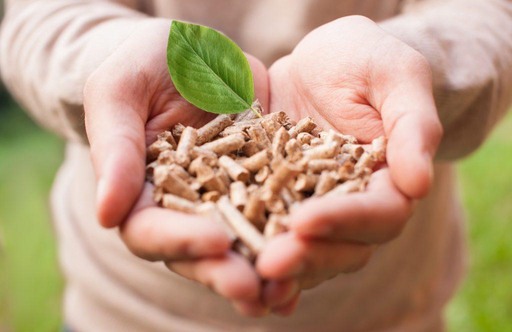biomassza feldogozott formában