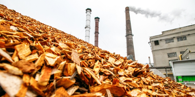 biomassza erőmű